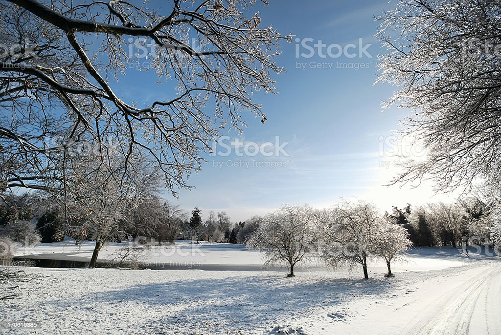 Winter Lane royalty-free stock photo