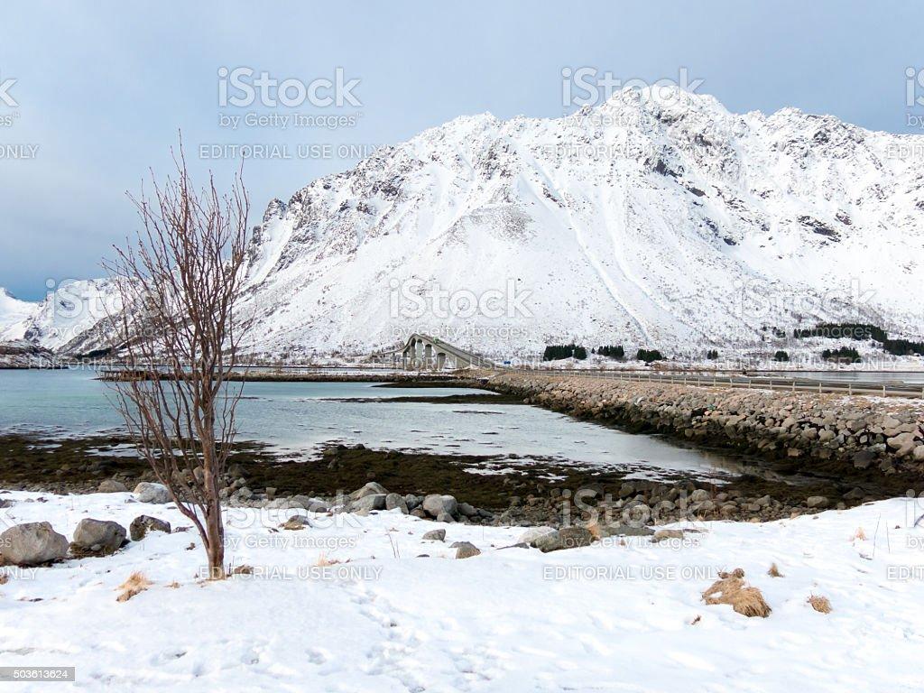 Winter Lofast Route on Lofoten Islands, Norway stock photo