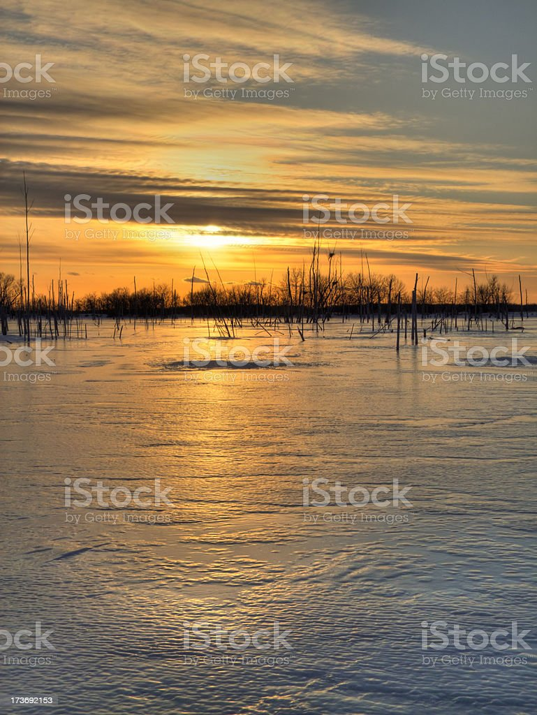 Winter Marsh Sunset - Nature Preserve royalty-free stock photo