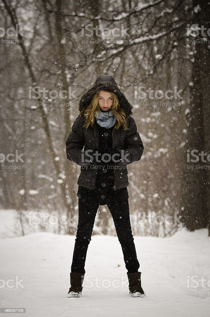 Winter Model royalty-free stock photo