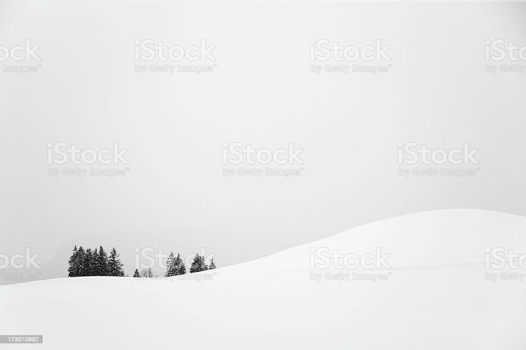 Winter Mood royalty-free stock photo