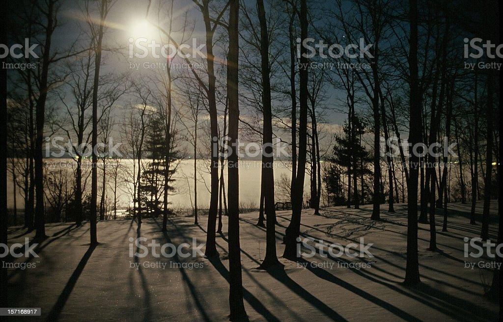 Winter Moonlight stock photo