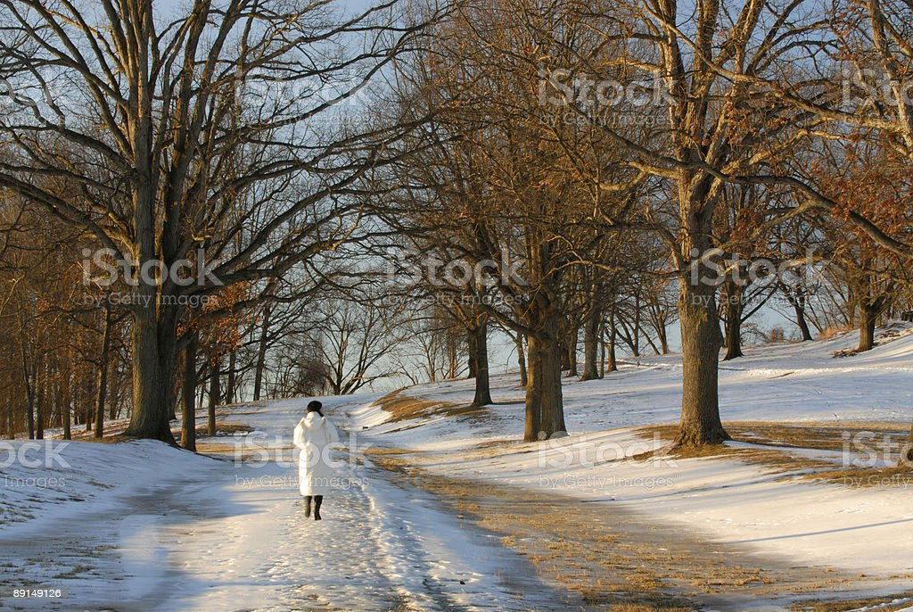 Winter Morning at Valley Forge stock photo