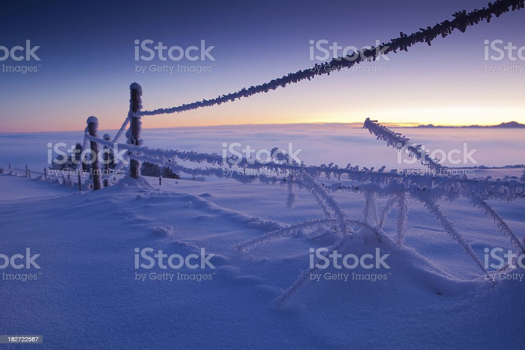 winter morning in bavaria royalty-free stock photo