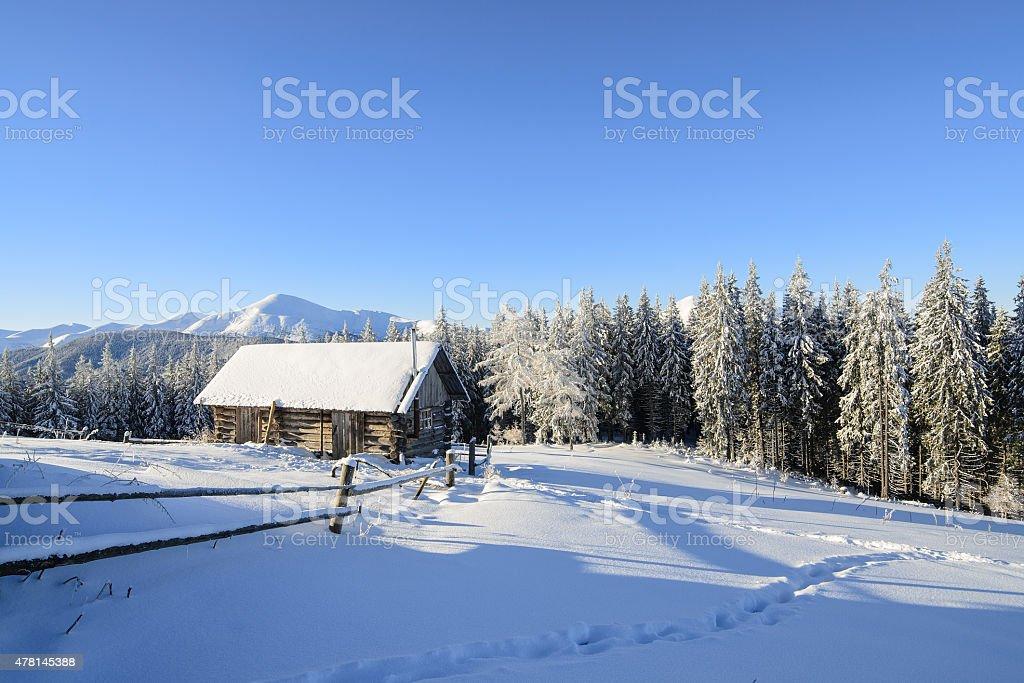 Matin d'hiver photo libre de droits