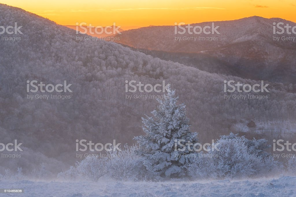 Winter Morning Roan Mountain Hike stock photo