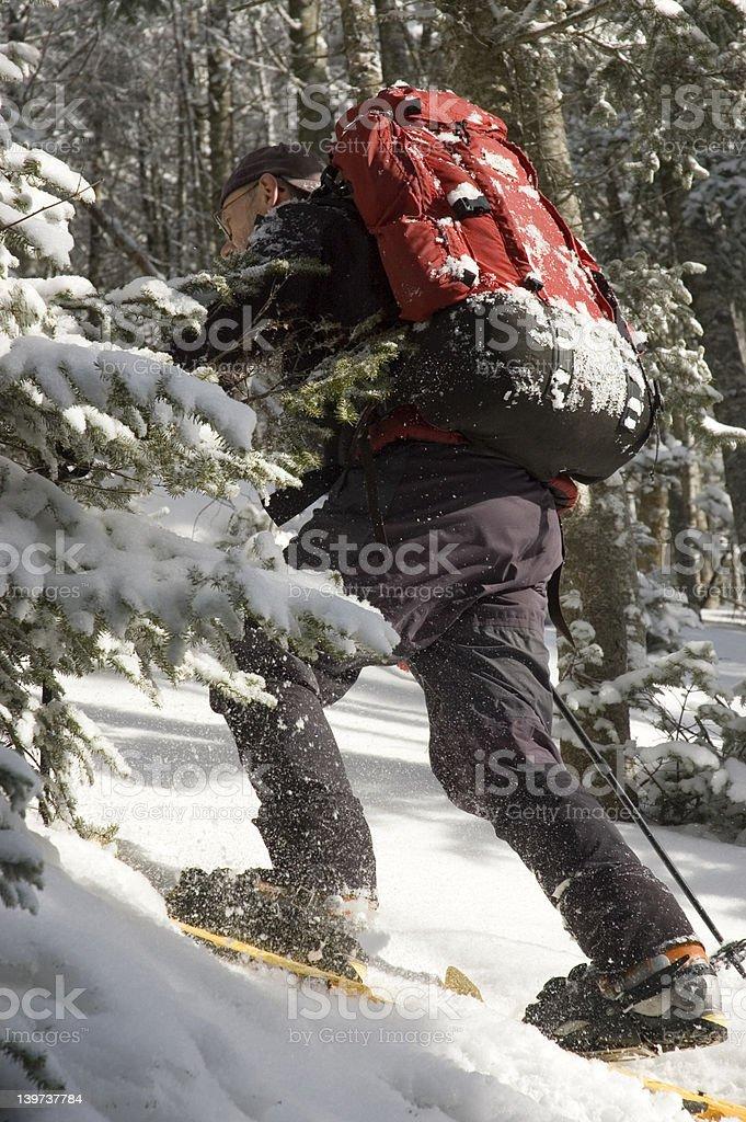 Winter Mountain Backpacker royalty-free stock photo