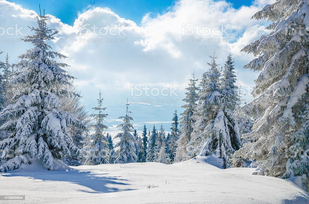Winter mountain on forest  and cloudy sky, Poland stock photo
