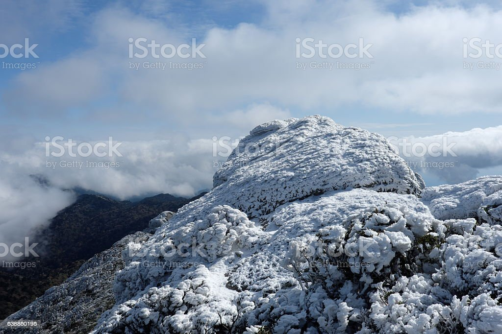 Winter mountain stock photo