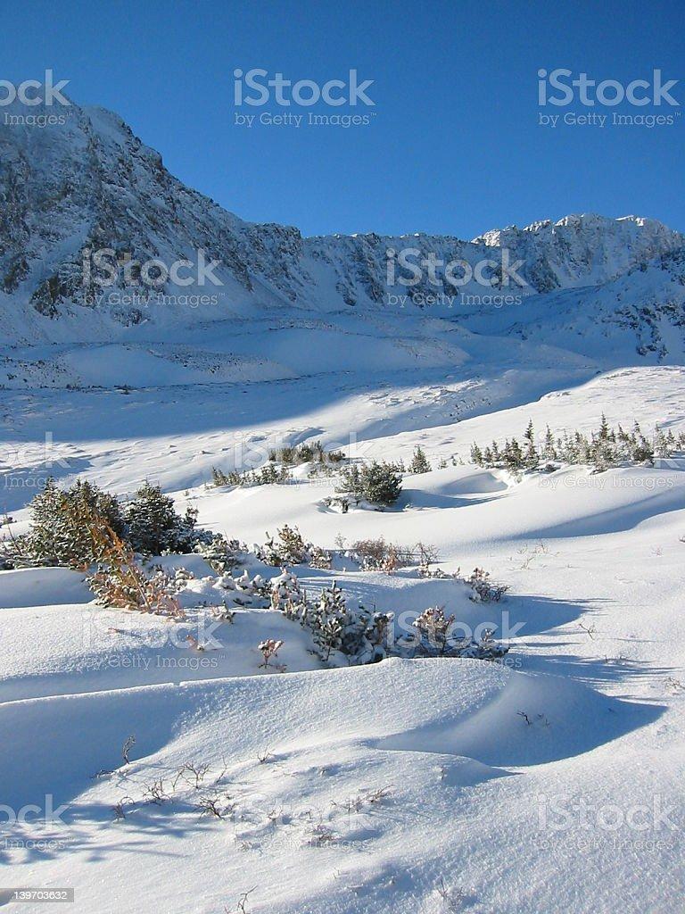Winter Mountain Scene royalty-free stock photo
