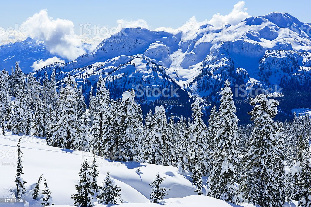 Winter Mountain Scenic stock photo