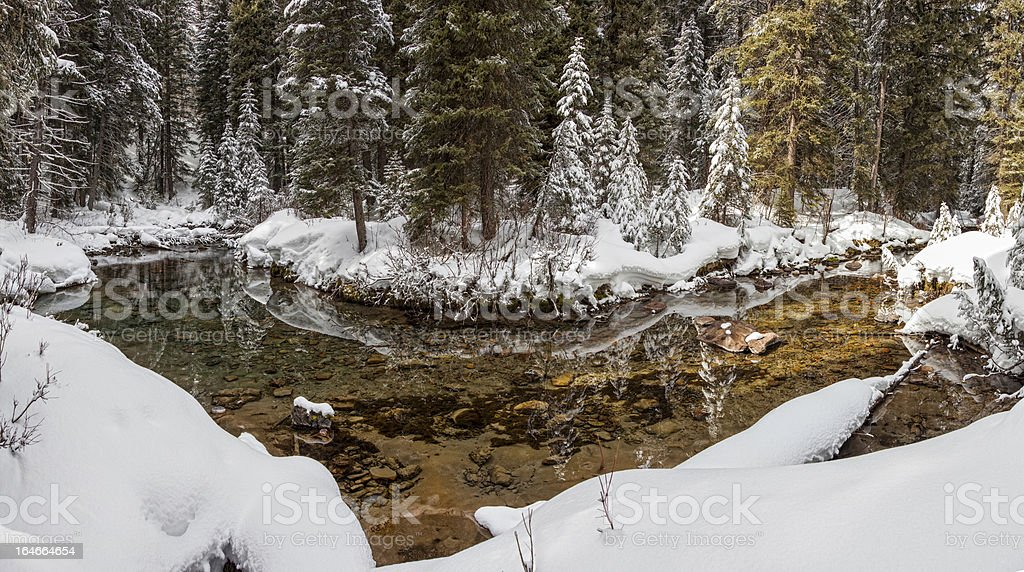 Winter mountain trout stream royalty-free stock photo