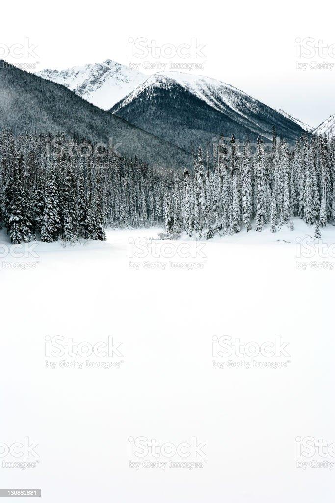 winter mountain wilderness stock photo