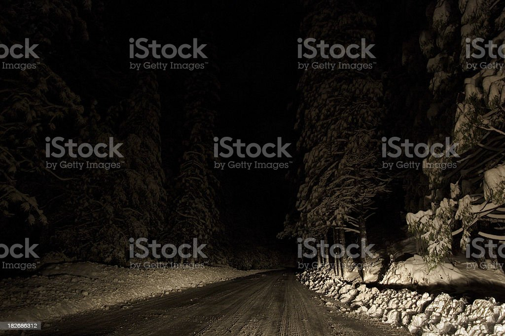 Winter Night Driving royalty-free stock photo