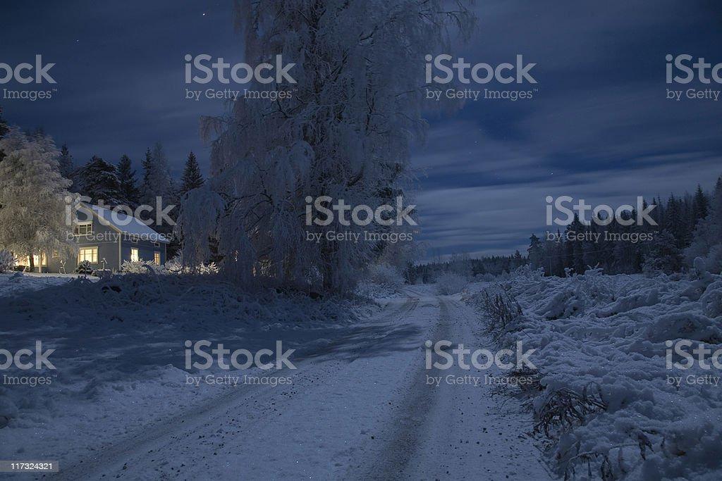 Winter Night Moonlight royalty-free stock photo