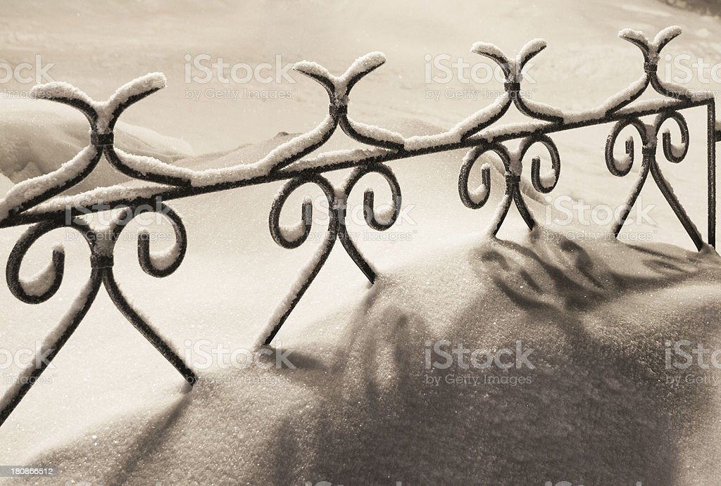 Winter. Night. White frost. royalty-free stock photo