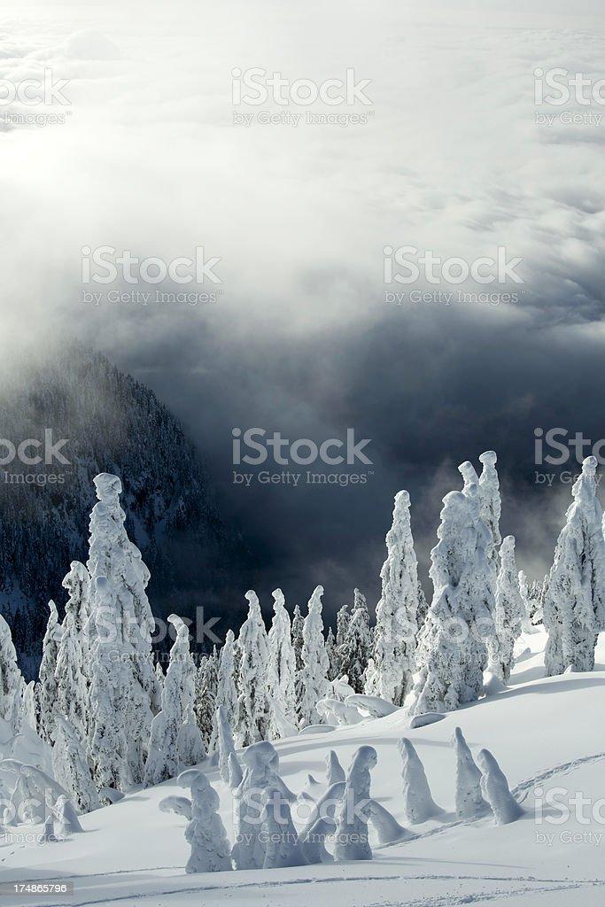 Winter on Mt. Seymour stock photo