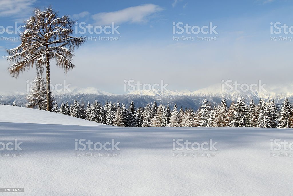 Winter on Salten-Plateau royalty-free stock photo