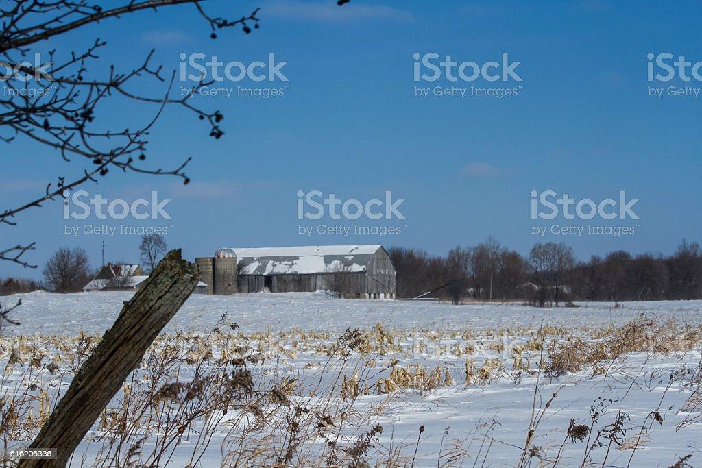 Winter On The Farm stock photo