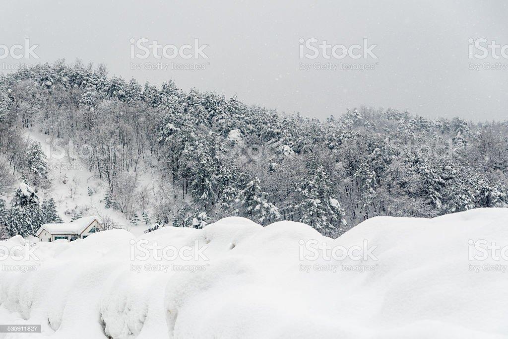 Zima w gospodarstwie zbiór zdjęć royalty-free
