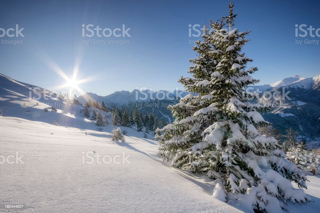 Winter Paradise stock photo