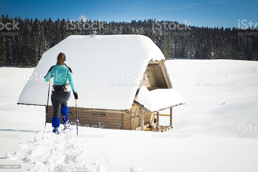 winter paradise royalty-free stock photo