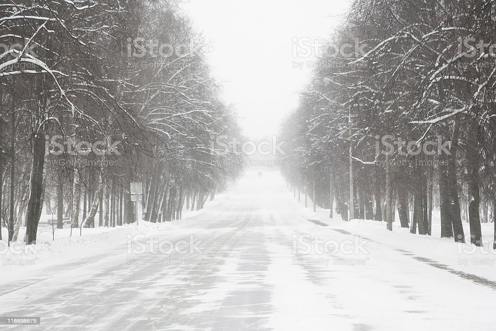 Winter park in blizzard. royalty-free stock photo