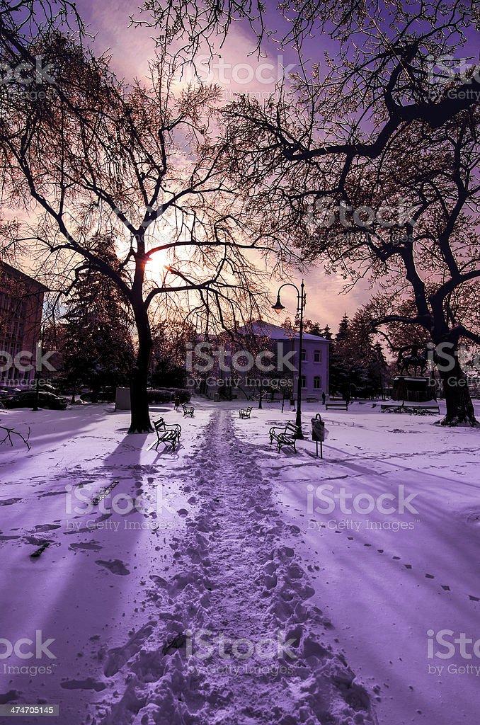 winter park landscape stock photo