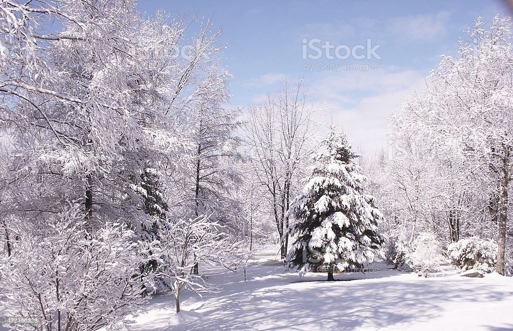 Winter Pastel stock photo