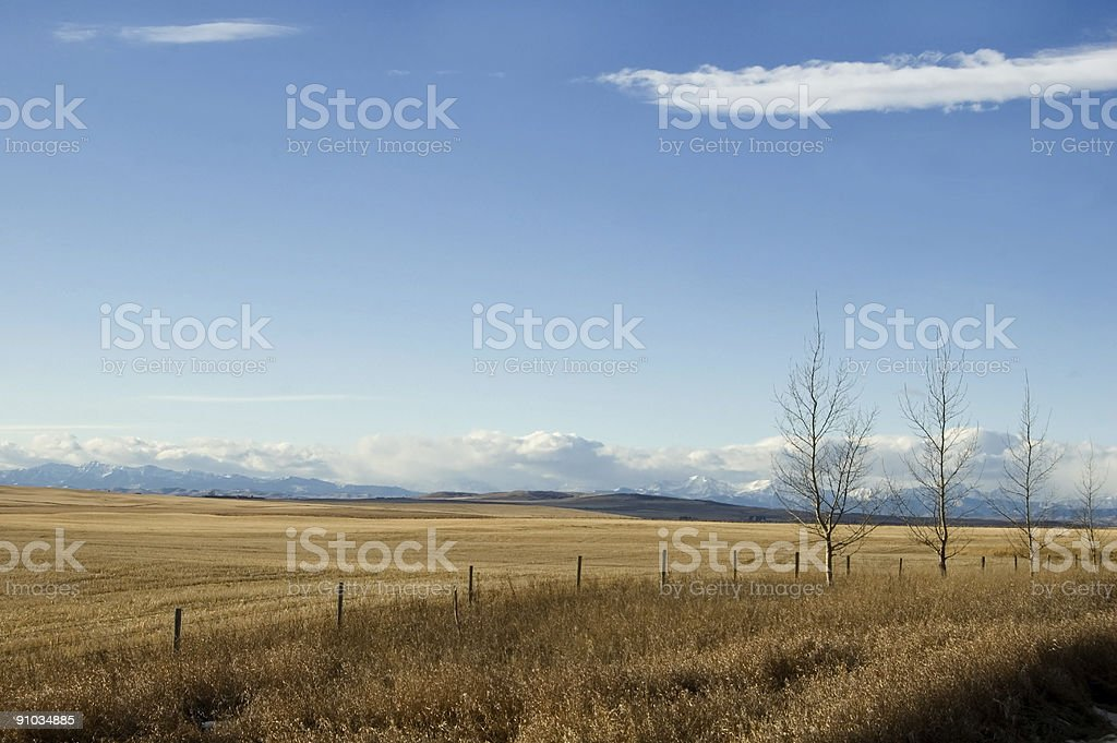 Winter Pasture and Mountains royalty-free stock photo