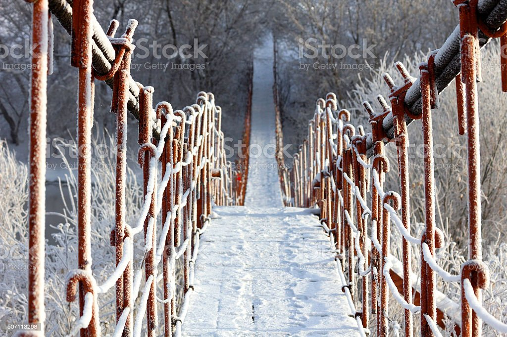Winter Path. Pedestrian bridge stock photo