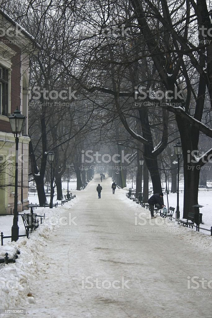 winter path with snow, trees, people stock photo