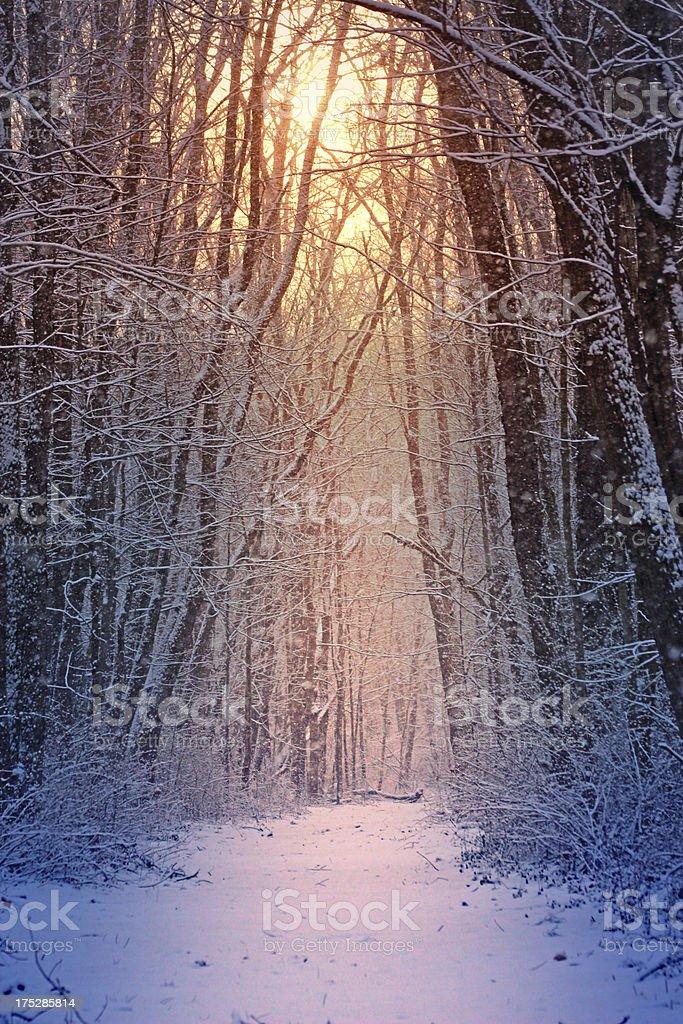 Vía de invierno foto de stock libre de derechos