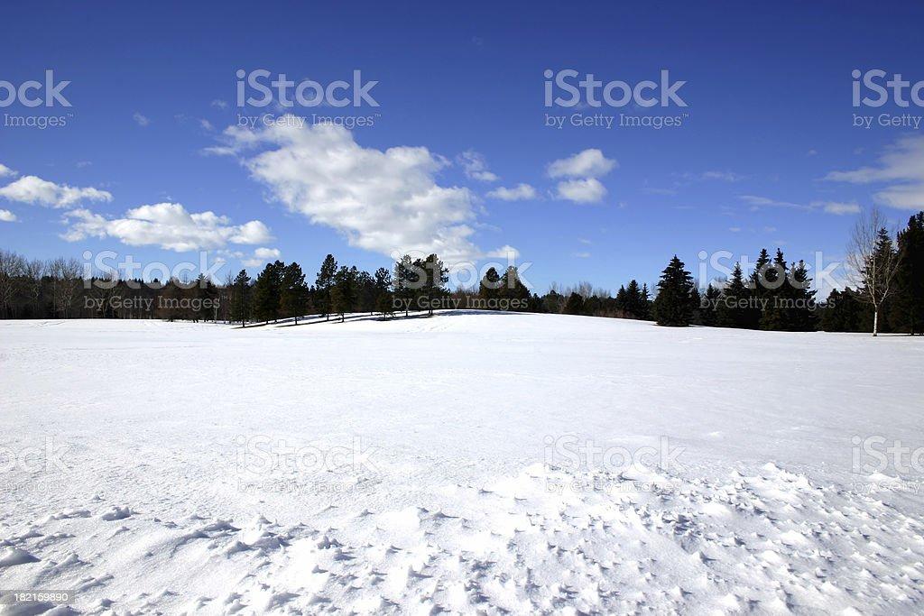 Winter # 1 royalty-free stock photo