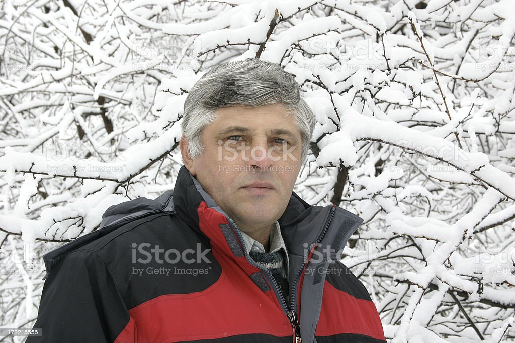 Winter picture stock photo