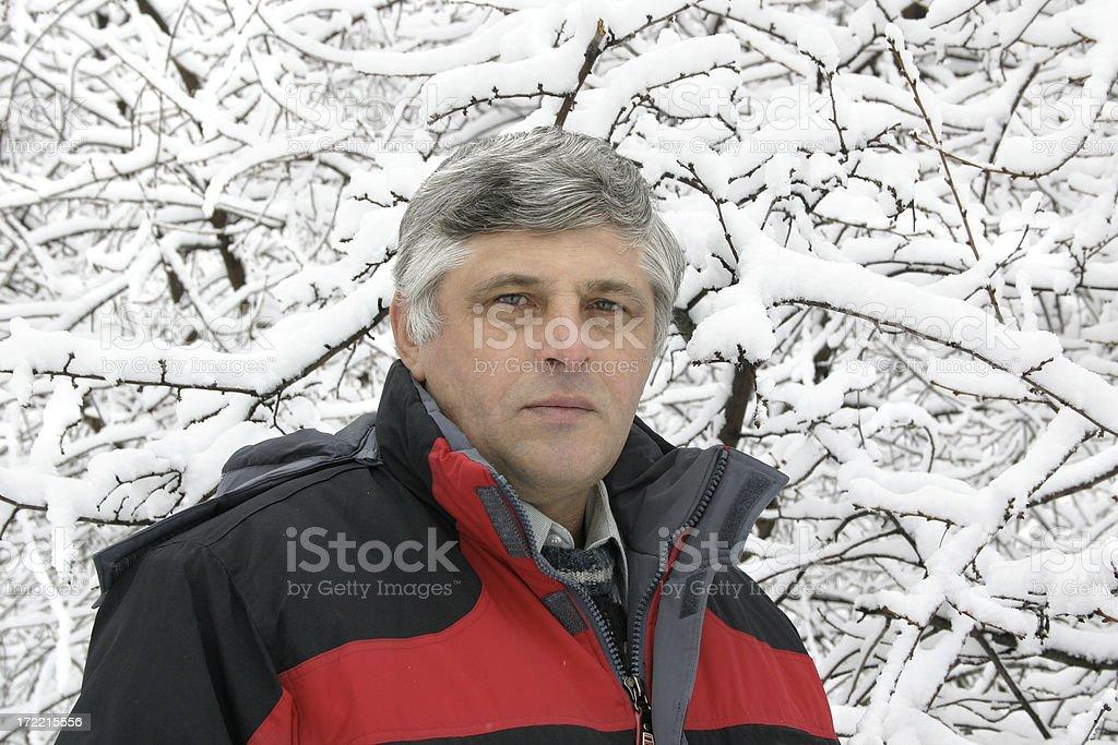 Winter picture stock photo