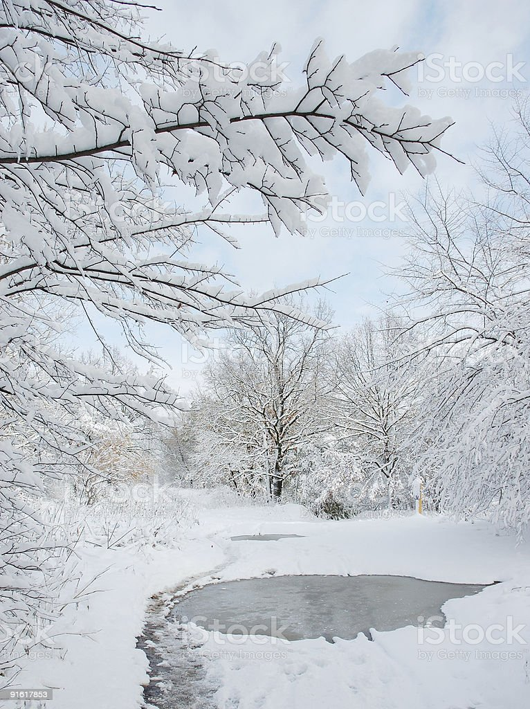 Winter picture royalty-free stock photo