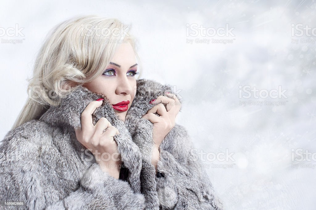 Winter queen 1 royalty-free stock photo