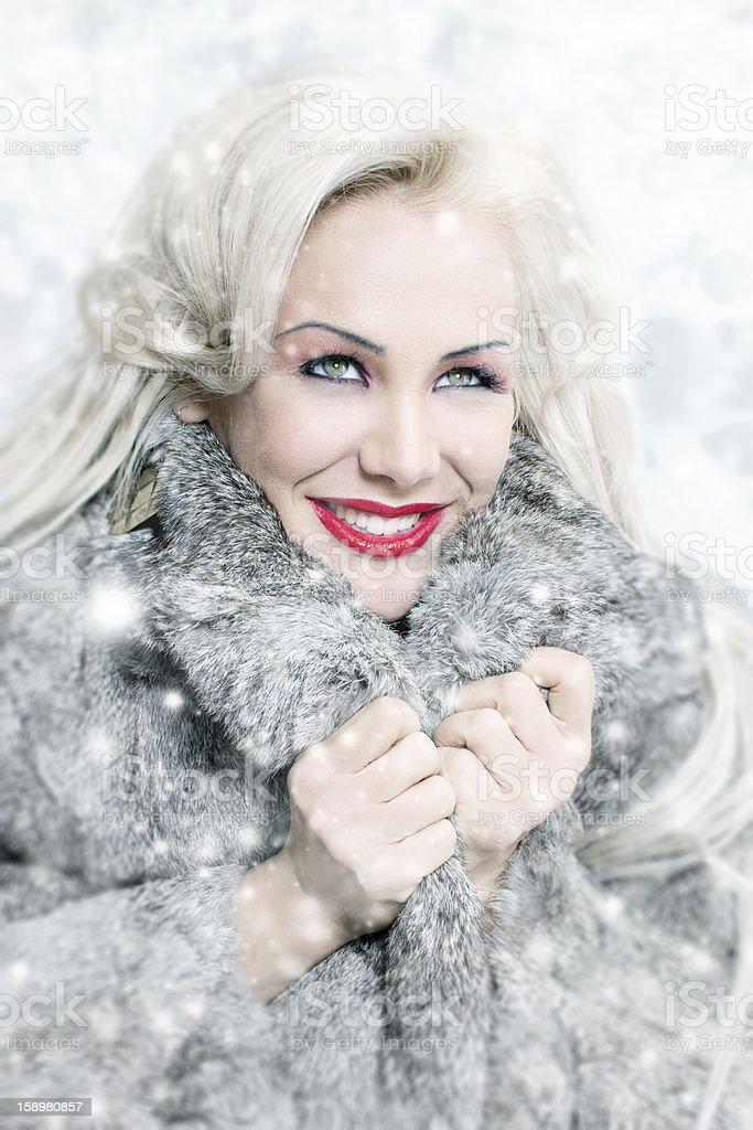 Winter queen 2 royalty-free stock photo