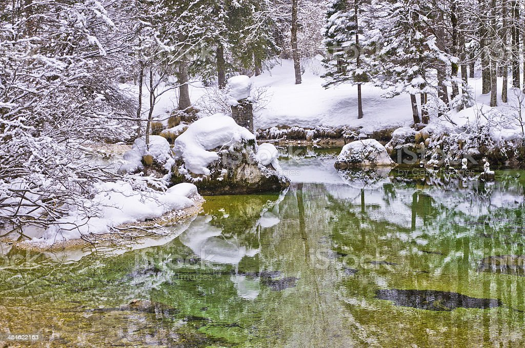 Winter reflections of a trees and rocks at Sava river stock photo