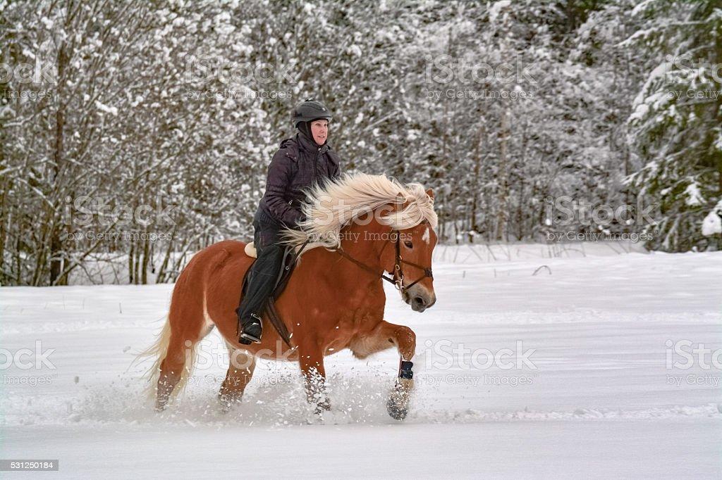 Winter rider stock photo