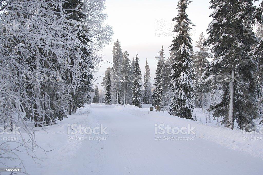 Winter road ahead royalty-free stock photo