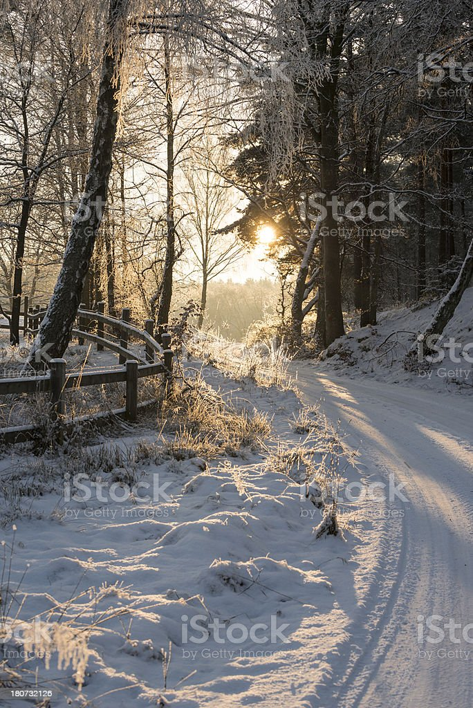 Winter road by sunset in southern Sweden (XXXLarge) stock photo
