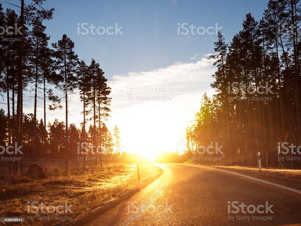 Winter road in Norrland in Sweden stock photo