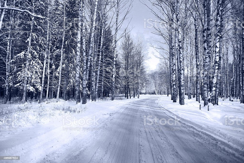 Winter road in snowy forest landscape stock photo