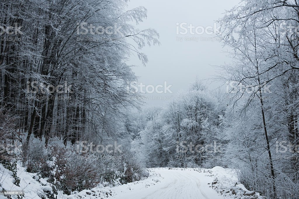 winter road in the mountains stock photo