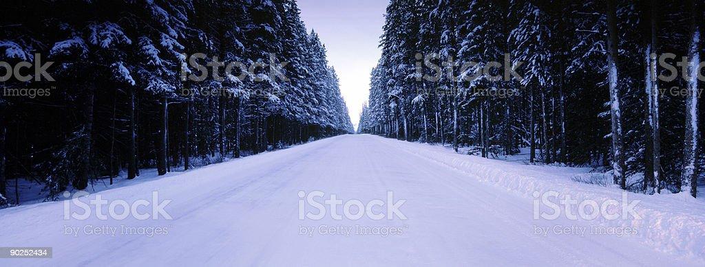 Winter Road Panoramic royalty-free stock photo
