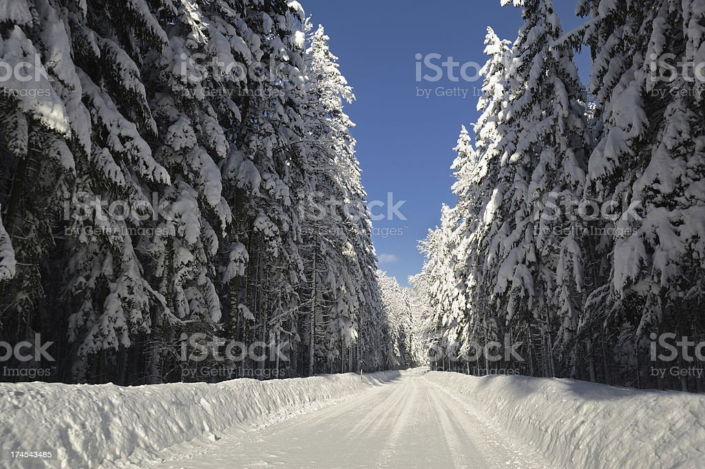 Winter Road (XXXL) royalty-free stock photo
