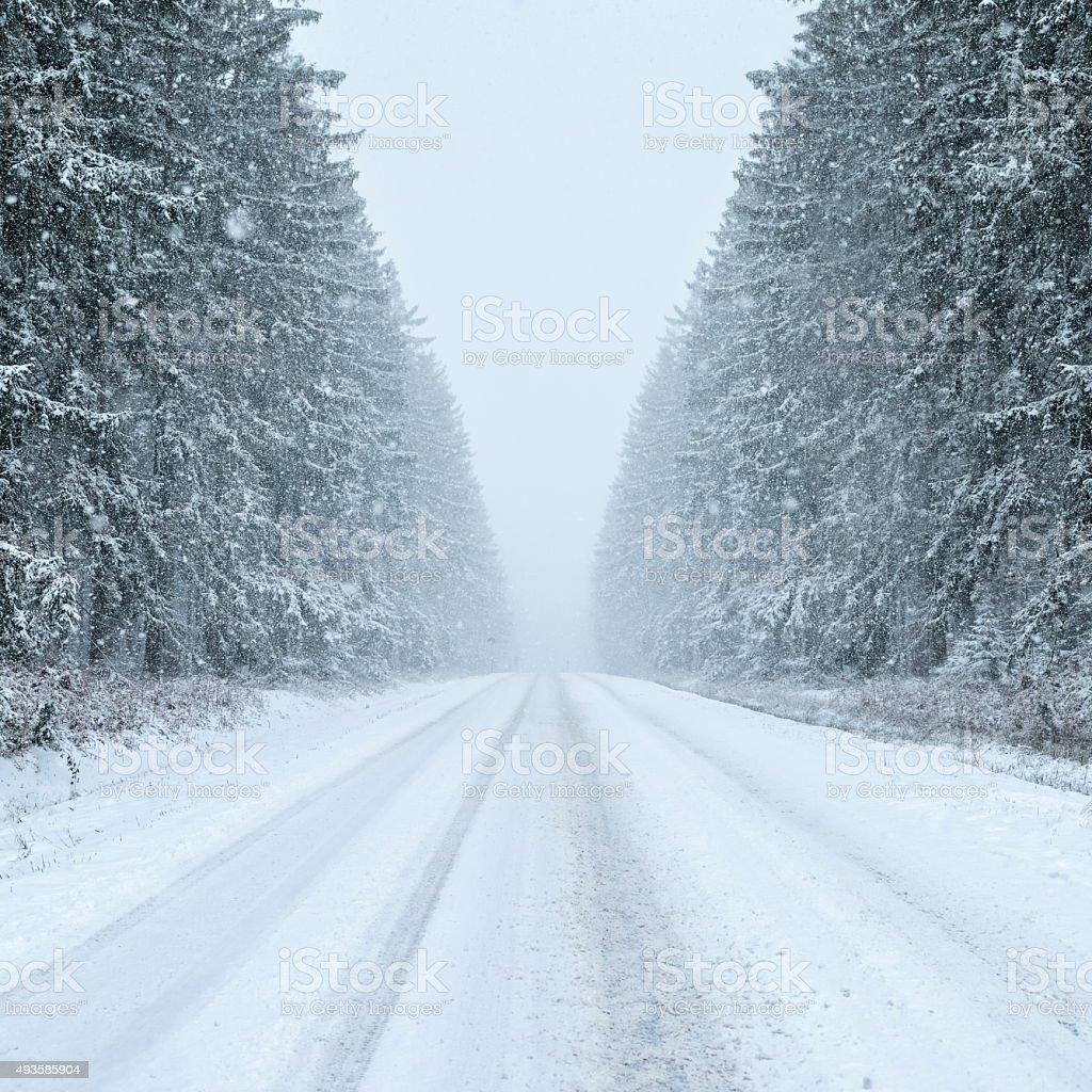 Winter Road - Snowfall stock photo