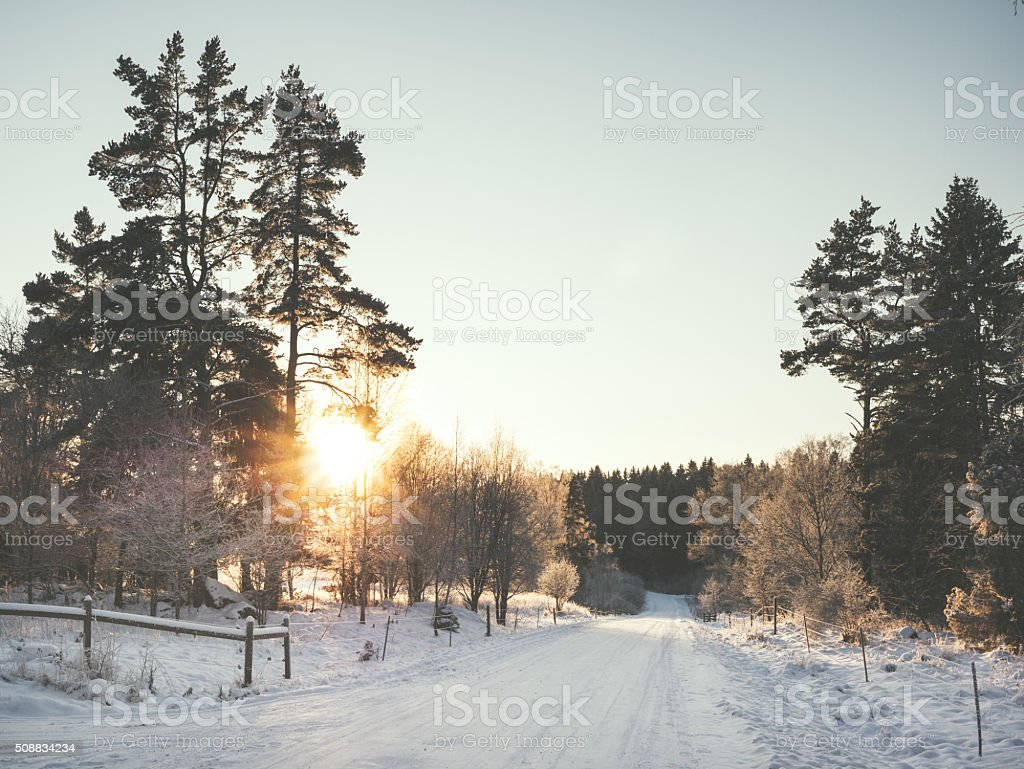 Winter road through winter landscape in sunset stock photo